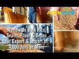 Buy White Rice Import, White Rice Import, White Rice Import, White Rice Import, White Rice Import, White Rice Import