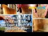 Acquire Bulk White Rice for Exporting, White Rice Exporters, White Rice Exporter, White Rice Exports, Export, Export