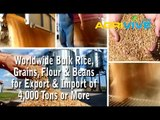 Bulk White Rice Dealer, White Rice Import, Bulk White Rice Meal, Bulk White Rice, Bulk White Rice, White Rice