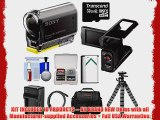 Sony Action Cam HDR-AS30V 1080p Wi-Fi HD Video Camera Camcorder with LCD Camcorder Cradle
