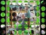safdar ali 03076275330