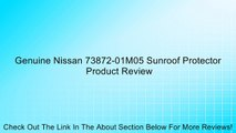 Genuine Nissan 73872-01M05 Sunroof Protector Review