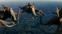 Les animaux de France 3 se mettent aux sports extrêmes