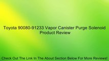 Mopar 4891739AA Vapor Canister Purge Solenoid Review - video dailymotion