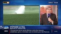 BFM Story: Agriculture: un nouveau plan pour réduire l'utilisation des pesticides - 30/01