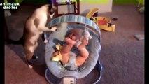 Quand les chats déclenchent des fous rires chez les bébés