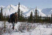 Into the Wild (2007) Full Movie