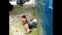 Videos Graciosos - Funny Videos MORTAL KOMBAT y DRAGON BALL Z - YouTube