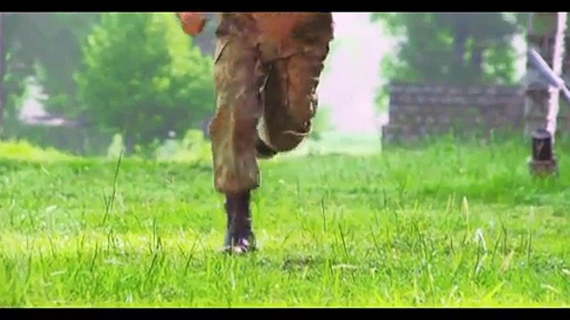 Defender ISPR documentary on Pakistan Armed Forces winner of Rome Film festival best documentary awa