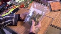 Légal, illégal, le cannabis en Europe (Yourope) (Arte) (FR)
