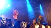 fiesta des suds 2014 30 ans massilia sound system massilia number one (live)