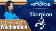 Monatliches Horoskop zum Sternzeichen Skorpion (2-8 Februar 2015)