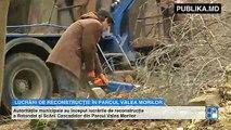 Parcul Valea Morilor își va căpăta aspectul de altădată! Proiectul pus în aplicare de autorități