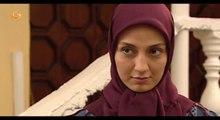 Setayesh bashi 2 Alqay 1