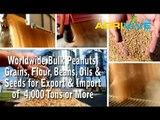 Acquire Bulk Peanuts for Importing, Peanuts Importers, Peanuts Importer, Peanuts Imports, Import, Import