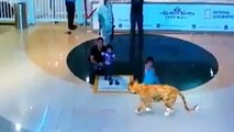 7D Hologram Technology Amazing Show in Dubai