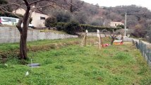A vendre - Maison/villa - Contes (06390) - 2 pièces - 50m²