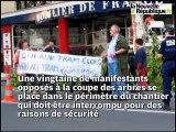 Chantier du tramway de Tours : les opposants à l'abattage des arbres interrompent les travaux avenue de Grammont