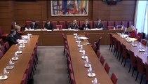 Audition de Mme Marie Adeline-Peix, dir. chargée des partenaires régionaux - Jeudi 5 Février 2015