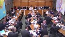 03.02.2015: Commission du Développement Durable - Audition de Sylvia Pinel, MinistreMinistre Du Logement, De L'Egalité Des Territoires et De La Ruralité