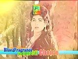 Meinay Kaha Aaiye - Ahmed Rushdi & Naseem Begum -  Shaheed