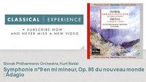 Antonin Dvorak : Symphonie n°9 en mi mineur, Op. 95 du nouveau monde : Adagio