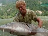 Living Dinosaur Fish - Jakub Vagner