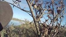 chasse aux canards ouverture 2014 après midi