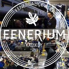 Fenerbahçe Aşkı