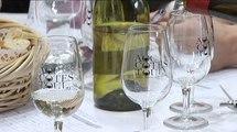 Dégustation-conseil des vins AOC Côtes de Toul