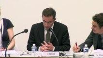"""IMH_RRJC_14_""""La protection juridictionnelle des droits face à la légitimation de la puissance étatique"""", Grégoire Bigot, Professeur d'histoire du droit à l'Université de Nantes, membre de l'Institut Universitaire de France."""