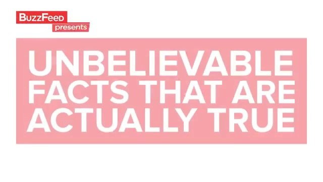 Unbelievable Facts That Are Actually True