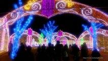 大阪城3Dマッピング スーパーイルミネーション 2014-2015 Osaka Castle 3D Mapping Super Illumination Japan