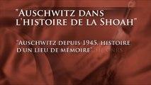 """Enseigner la Shoah : """"Auschwitz depuis 1945, histoire d'un lieu de mémoire"""""""
