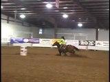 Waddell Quarter Horses