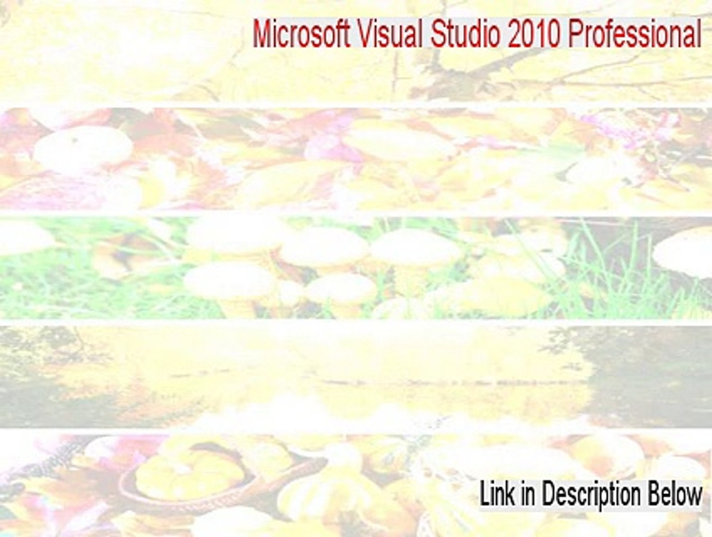 Microsoft Visual Studio 2010 Professional Cracked - microsoft visual studio  2010 professional - enu (2015)
