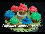 Recette de Cupcakes vanille et chocolat