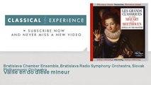 Frédéric Chopin : Valse en do dièse mineur
