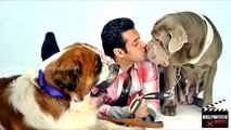 Salman Khan's Bajrangi Bhaijaan, PRDP, Shuddhi, Sher Khan, Partner 2 In 2015   Bollywood Weekly News