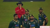 Shahid Afridi and Ahmad Shahzad Funny Moment During Match - Pak Cricket Team Funny Moments