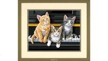 "Набор для раскрашивания Paint Works ""Котята на рояле"", 36 см х 28 см. DMS-91144"