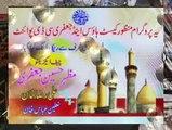 Zakir Haji Nasir Abbas Notak  Zakir Najmul Hassan Notak Mushtarqa Majlis Shadat Ali Asgar 2014