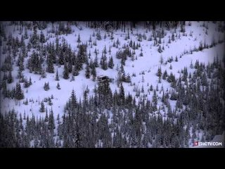 Snowcat Resource | Learn About, Share and Discuss Snowcat At Seen2 com