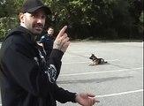 Un chien policier ouvre et ferme la portière d'une voiture de police