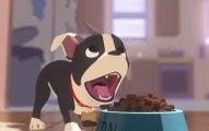 Festin, le court métrage Disney qui se met dans la tête d'un chien