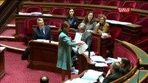 Au Sénat, Ségolène Royal défend les sacs plastiques biodegradables