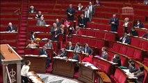assis debout amendement Da Silva NOTRe