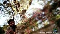 Main Apne Nabi Video Naat - Syed Noman Shah - Naat sharif - Best Naat Year of 2014