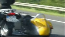 Cane in autostrada sul sidecar (Dog in the sidecar)