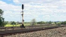 Cityrail passenger railcars in New South Wales - Australian Railroads & Railways